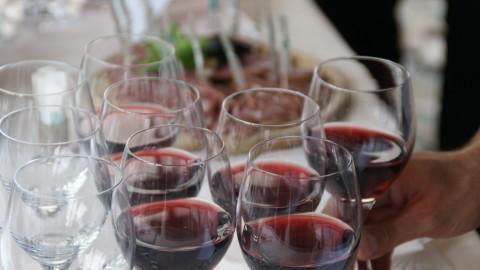 Wine tasting Incentive Lake Maggiore