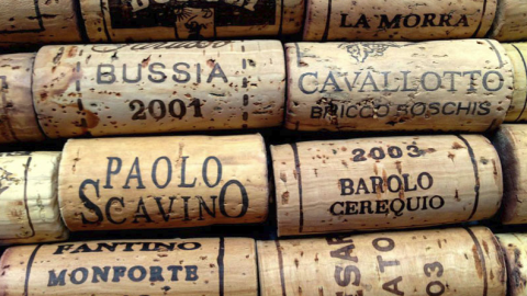 Barolo & Barbaresco Wine Tour
