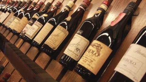 Wine tasting Colline Novaresi, Langhe and Barolo