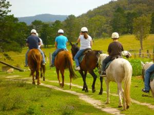 Horse riding Lake Maggiore